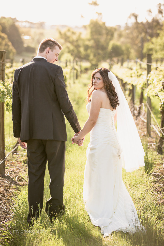 Immerse Winery Wedding Dixons Creek Yarra Valley